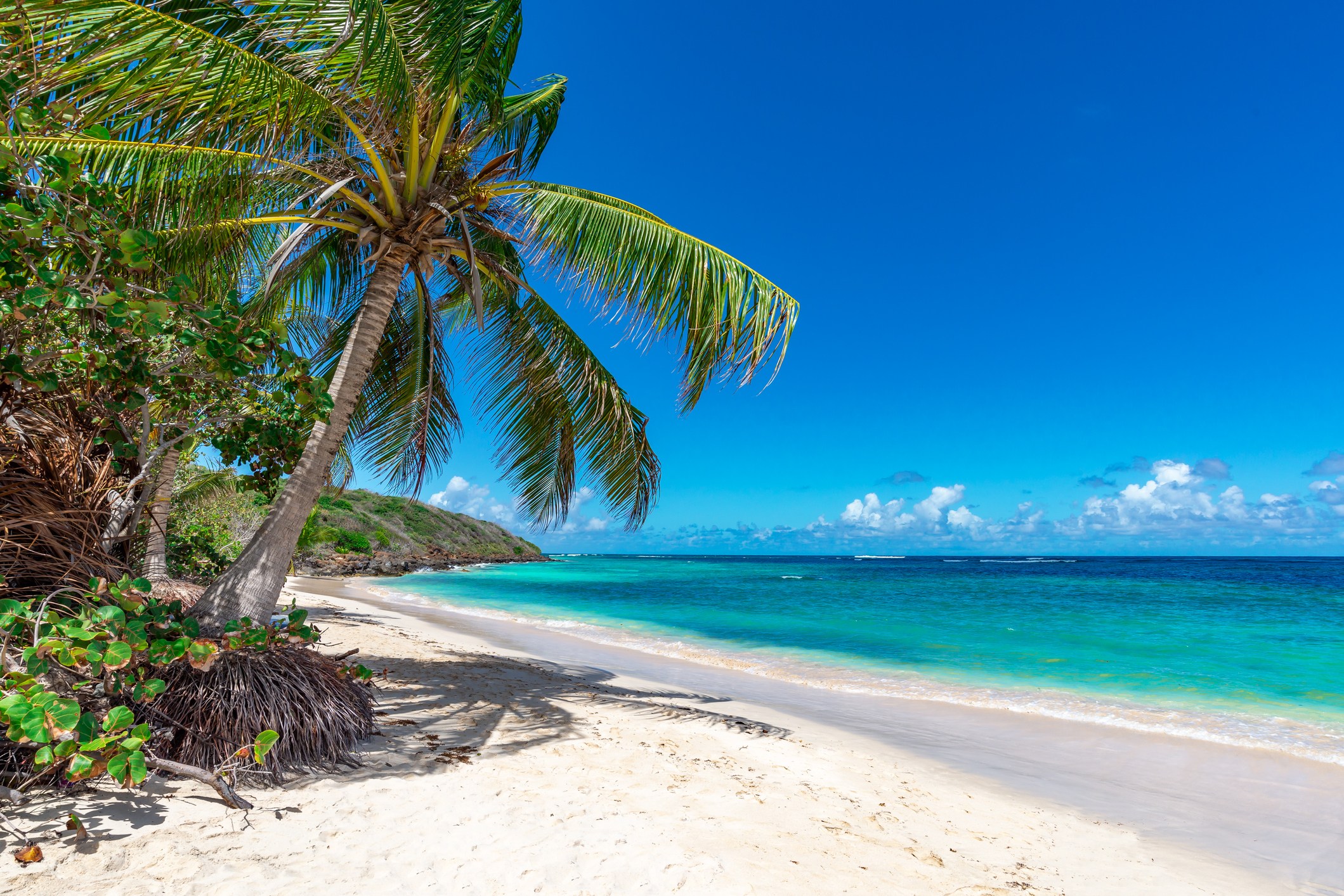Beautiful white sand beach in Florida