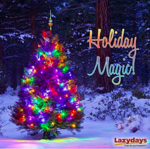 Lowry Park Zoo Christmas.Holiday Rv Events At Lazydays Rv Resort Tampa