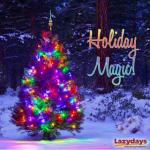 Enjoy the Holiday Season at Lazydays RV Resort in Tampa